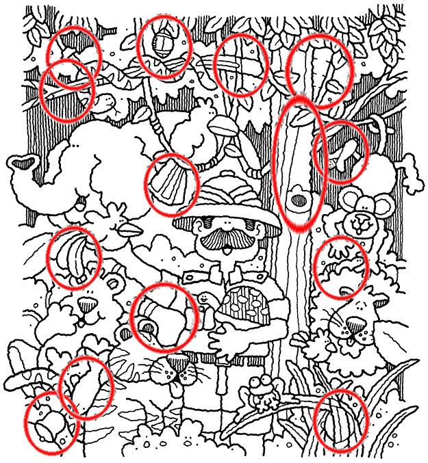 Dibujos ocultos  El Blog de Nuestra Clase
