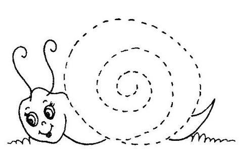 caracol - Actiludis