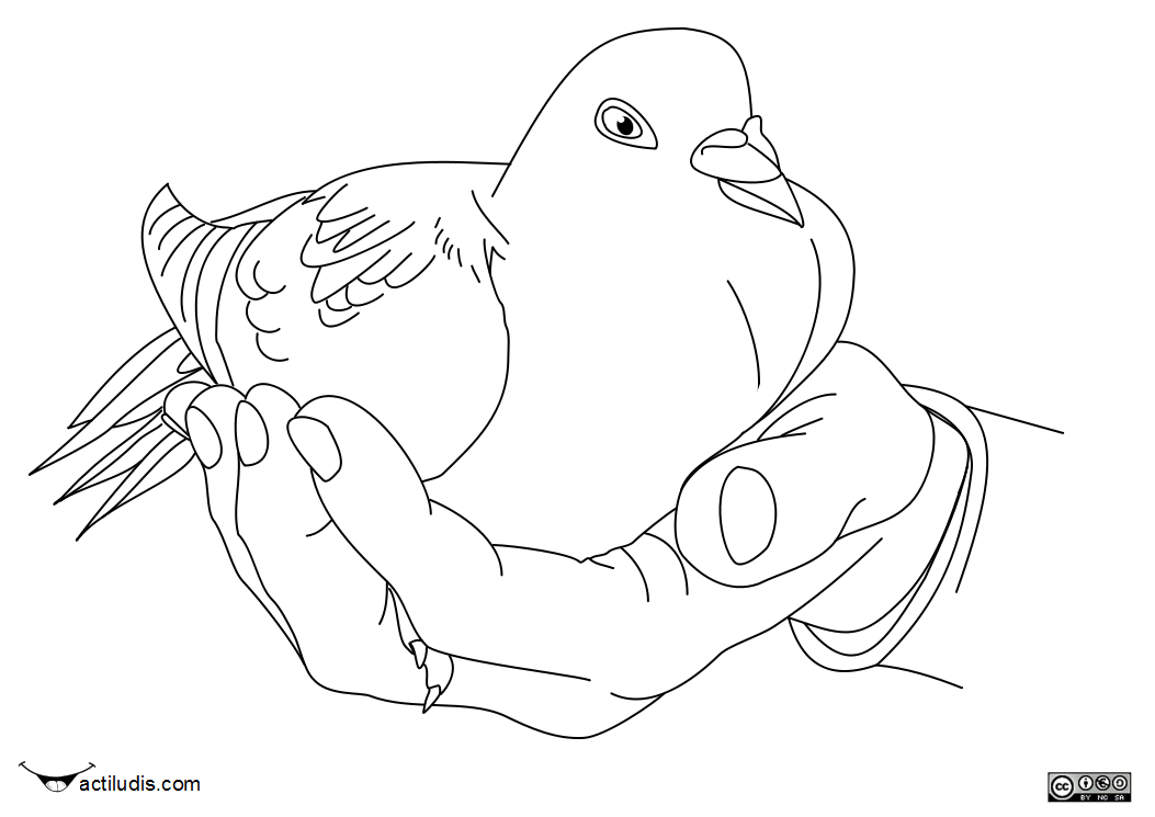 La Paloma De Paz Para Dibujar