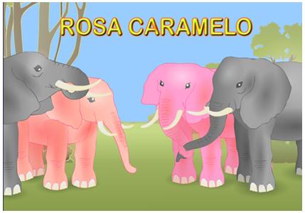 Rosa Caramelo Actiludis