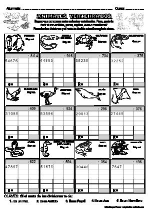 Dividendo 4-5 cifras y divisor 3 cifras 06