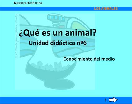 animal copy