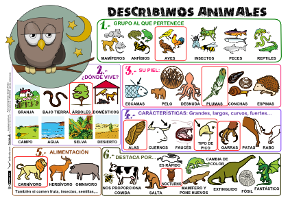 Mural para describir animales actiludis for Cuales son las caracteristicas de un mural