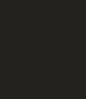 external image mascota-BRASIL-2013.png
