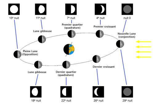 fases lunares - Actiludis