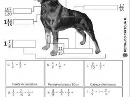 suma y resta fracciones heterogeneas
