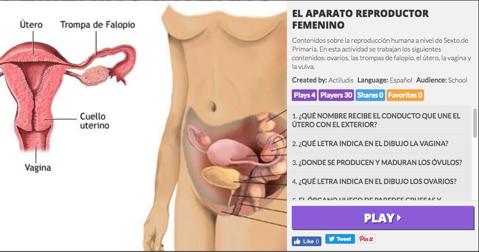 APARATO REPRODUCTOR FEMENINO - Actiludis